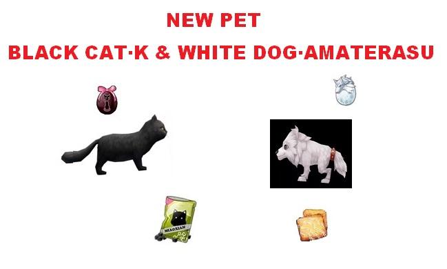 (New Pet) Black Cat & White Dog
