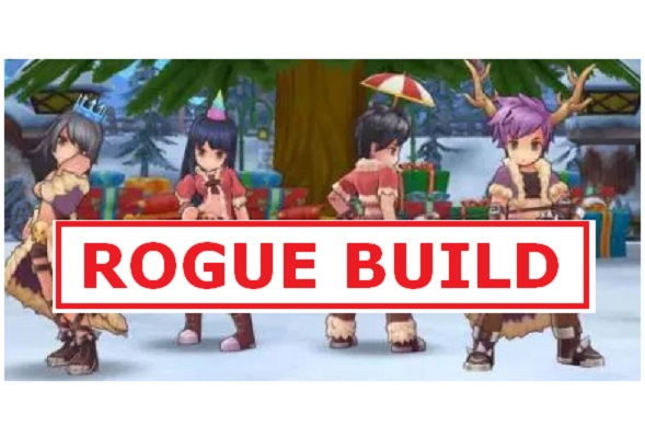 Rogue Build Guide